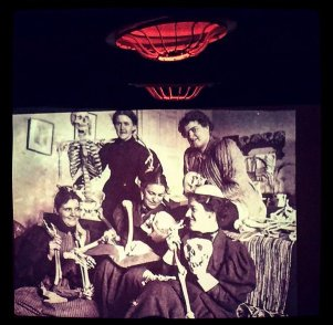 Nerd Nite 2015 - Doctor or Doctress